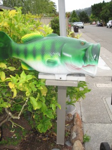 mailbox for fish mail