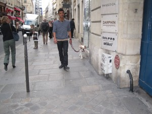 just walkin the dog..